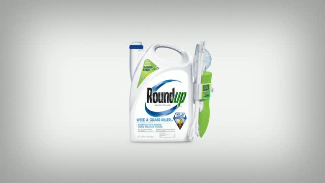 Roundup Comfort Wand RTU Liquid Weed and Grass Killer 1 1 gal  - Ace