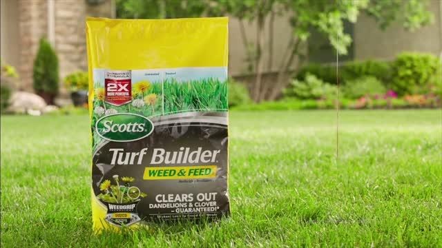 Scotts Fertilizer Lawn Food At Ace Hardware
