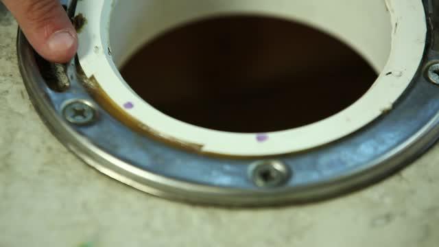 Danco Toilet Flange Repair Ring Stainless Steel - Ace Hardware